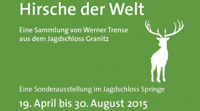Beitragsbild Hirsche JagdschlossSpringe