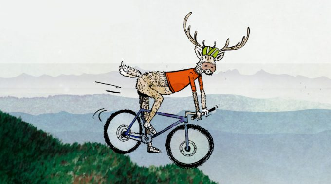 Wildtiere Wintersport + Freizeitaktivitäten