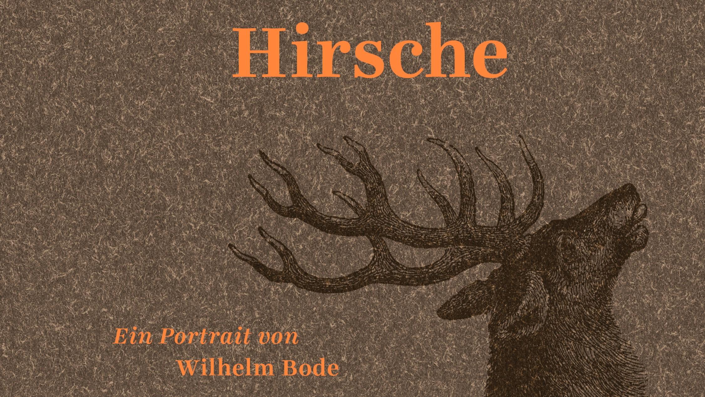 HIRSCHE – Ein Porträt